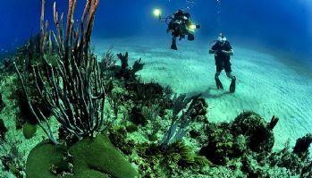 Oprema za ronjenje i podvodni ribolov dostupna je i putem webshopa