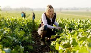 Objavljen je III. Javni natječaj Grada Poreča za financiranje programa i projekata udruga u području poljoprivrede