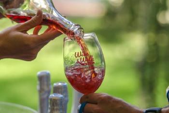 Upoznajte lokalnu eno-gastronomsku ponudu sjeverozapadne Istre: Wine & Walk by the sea!