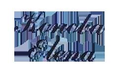 Domaći istarski specijaliteti, tartufi, mesni specijaliteti, gulaš