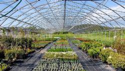 Donosimo savjete za atraktivan i uredan vrt