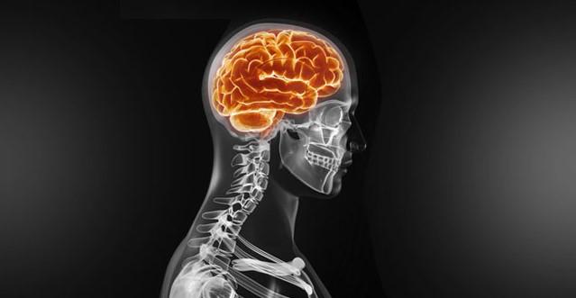 SPECIJALISTIČKA NEUROLOŠKA ORDINACIJA MARIO GRBIN, dr.med.spec.neurologije
