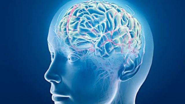 PRIVATNA NEUROLOŠKA ORDINACIJA JEDREJČIĆ - GRBIN