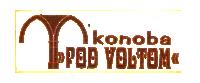 tartufi, jela s tartufima, Motovun, trattoria, Gasthaus, restaurant, tartufo Montona