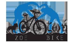 Servis, popravak, e-bike, service