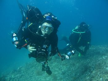 What to do in Pula - Diving discovery