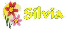 Dostava cvijeća, flower delivery, cvjećarna, Rovinj