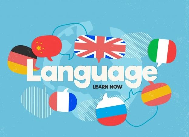 Škola stranih jezika, Pazin,  Lingua Plus