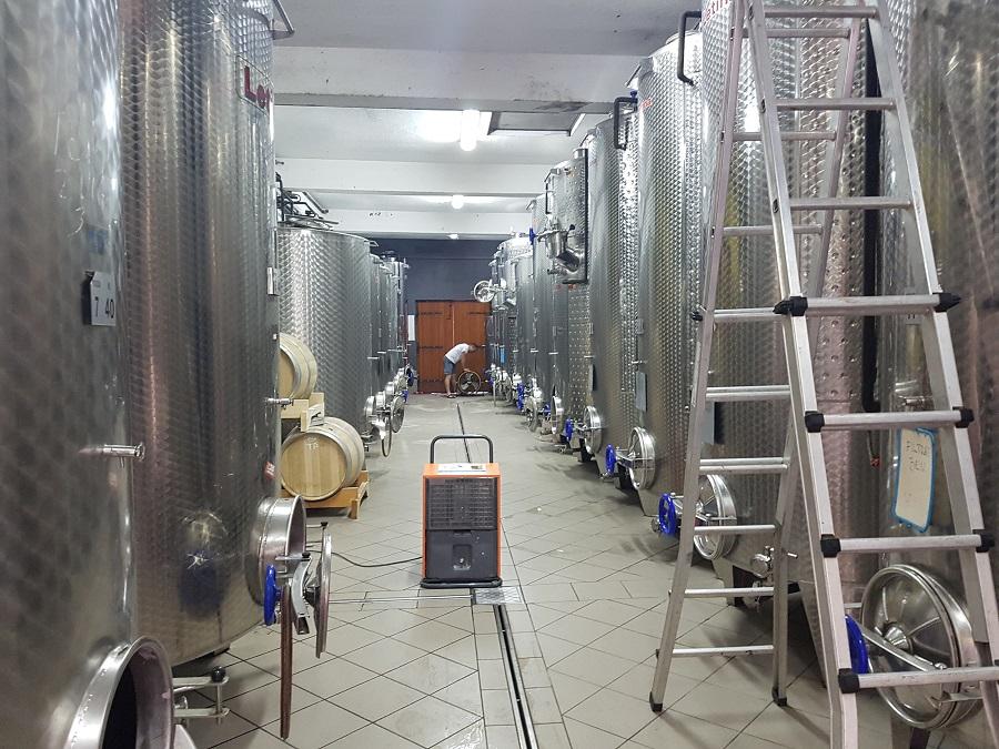 Odvlaživanje vinskih podruma, Kapljica, Poreč