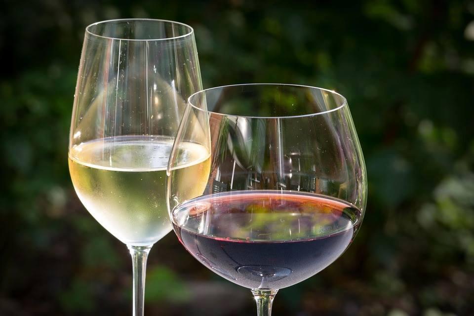Weinprobe Pazin In Sylvis wein