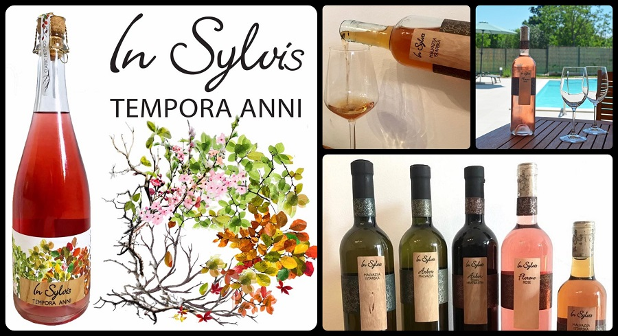 Istarska vina, vinari, Pazin, Wine