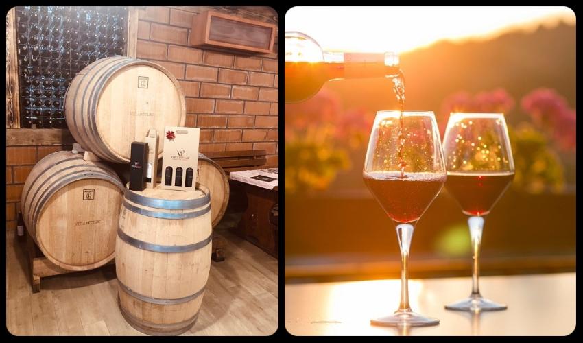 vino, degustacija vina, vinski podrumi