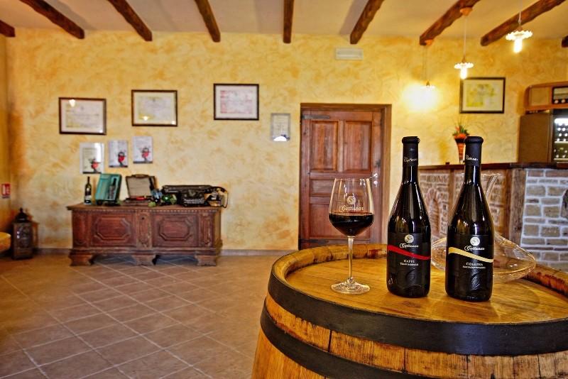 Vrhunska istarska vina