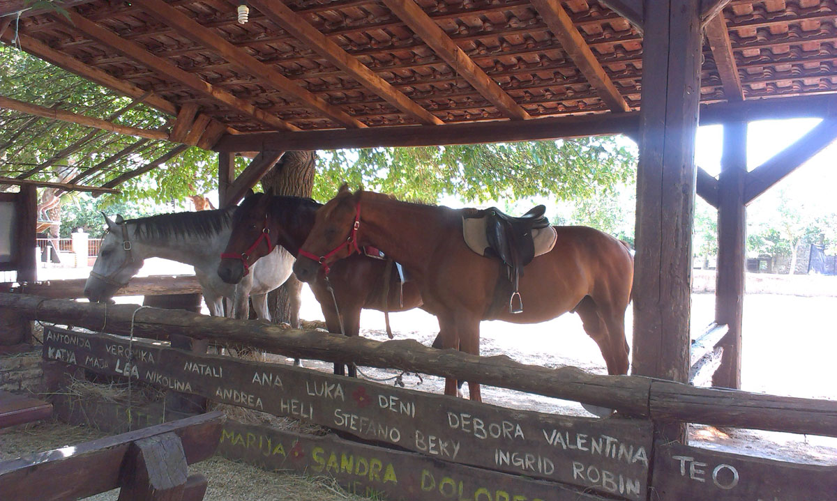 jahanje - Ranch Barba Tone