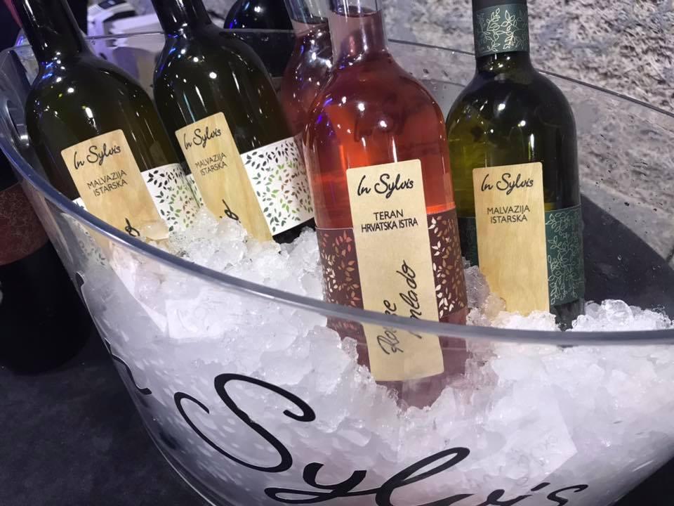 Wine tasting Pazin In Sylvis Wine