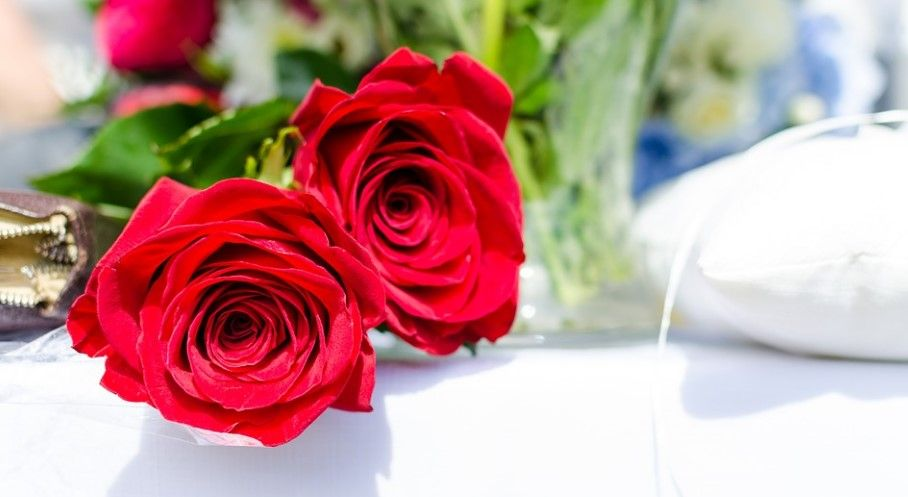Sretan Dan žena želi Vam eIstra.info
