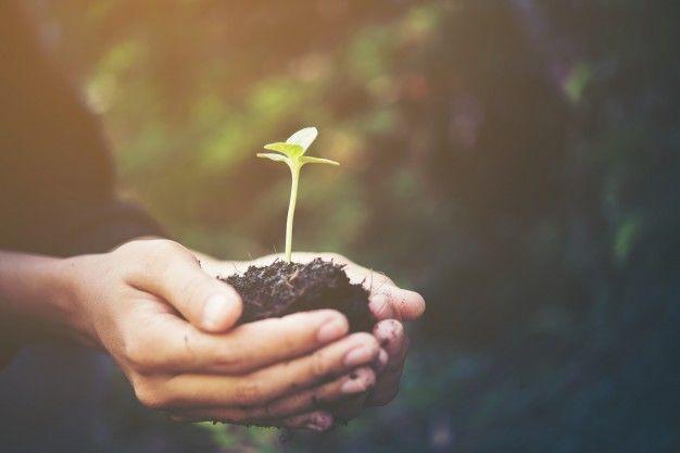 Suradnik programa održivog razvoja (m/ž)