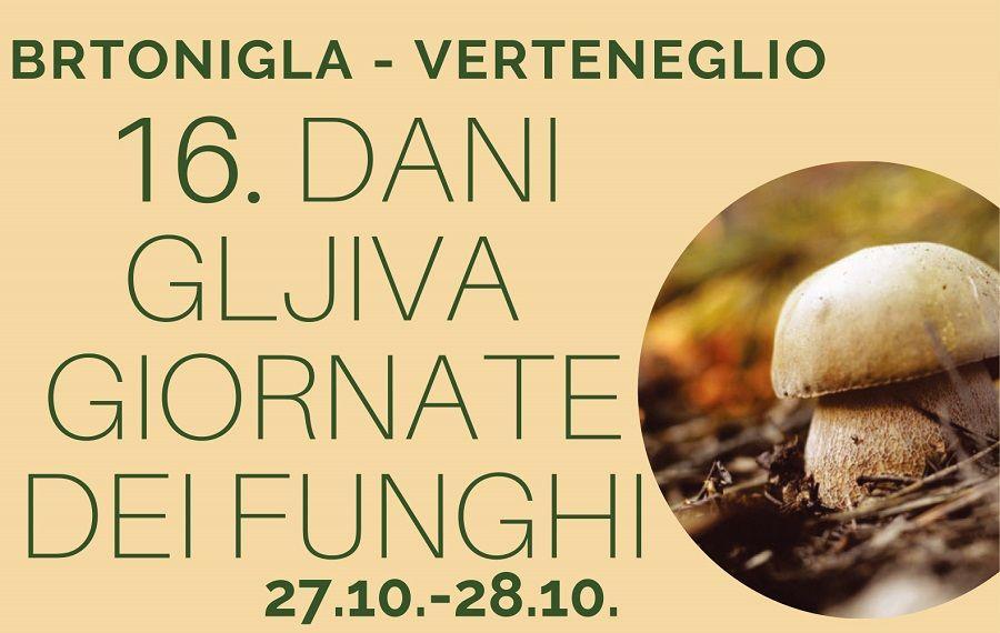 Ovog vikenda očekuju vas Dani gljiva u Brtonigli!