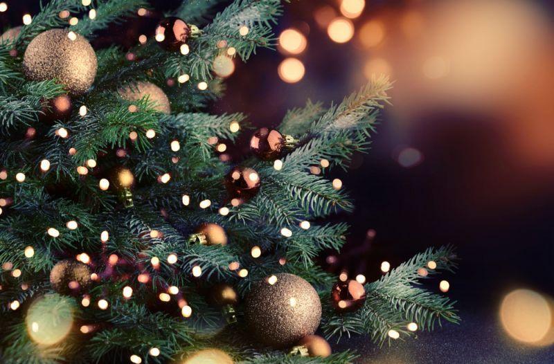 Krajem tjedna posjetite Božićni sajam u Novigradu!
