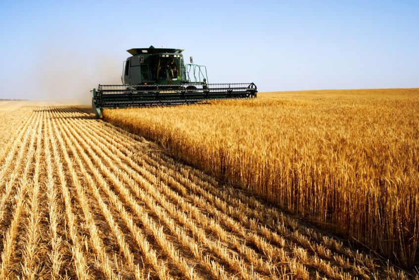 Poziv svim poljoprivrednicima - izašao je novi natječaj iz mjere 4 Programa ruralnog razvoja