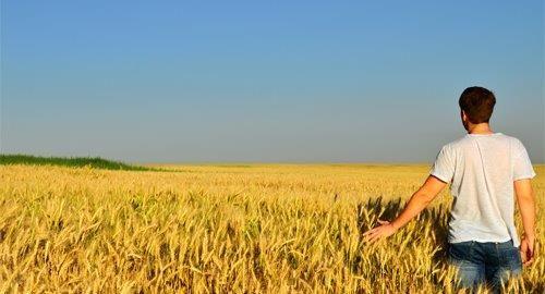 LAG natječaj  Potpora razvoju malih poljoprivrednih gospodarstava