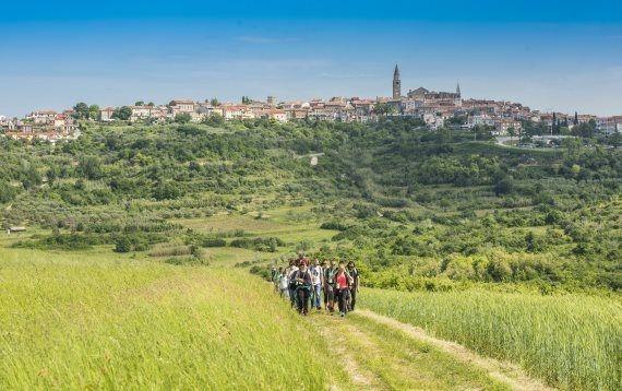 Vinoljupci i ljubitelji prirode, prijavite se na  Istria Wine and Walk