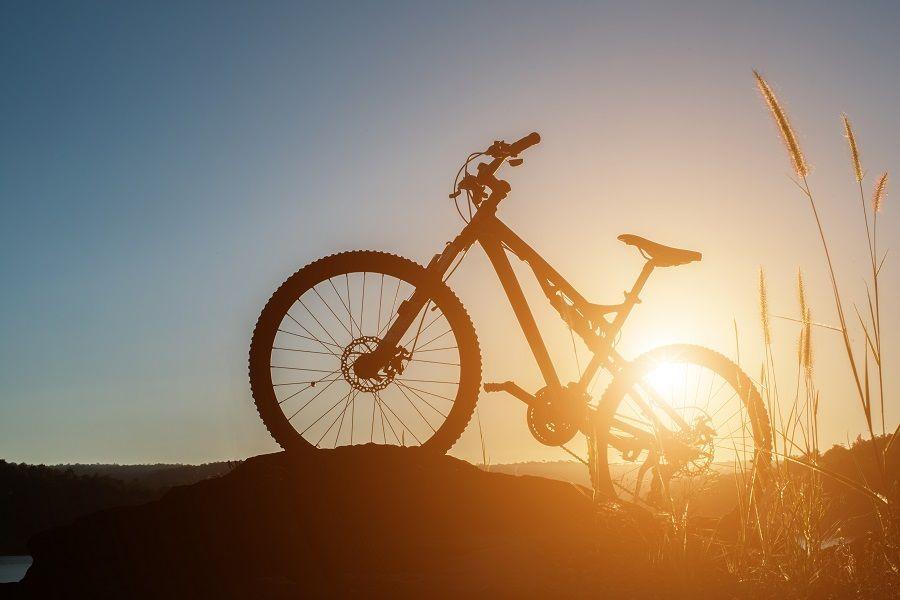 Cikloturizam u Istri: Budućnost su biciklističke trake uz ceste