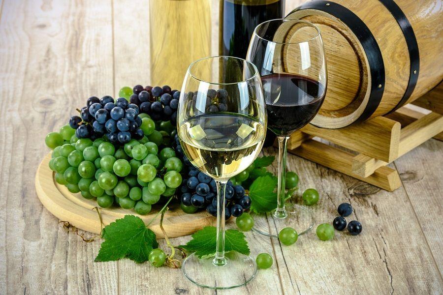 Prihvaćena strategija razvoja istarskog vinarstva i vinogradarstva do 2030.