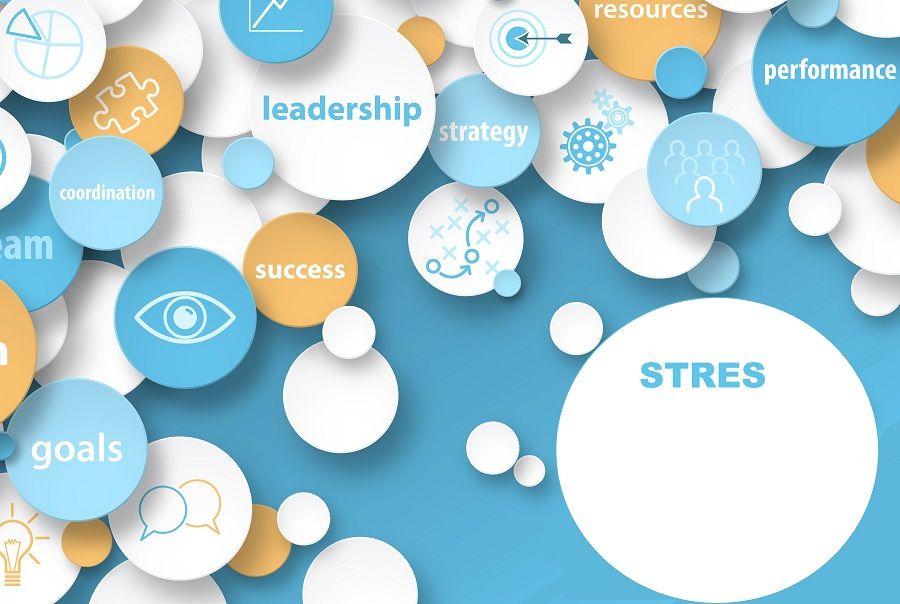 Seminar: Stress management