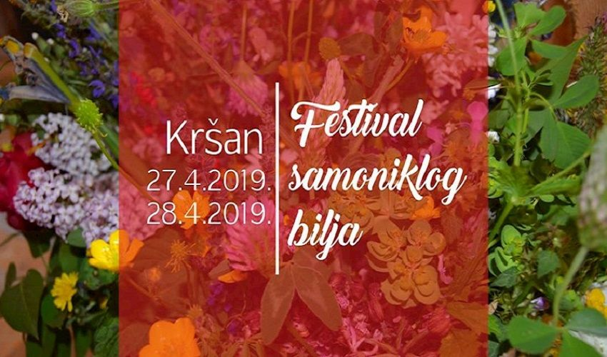 10. Festival samoniklog bilja u Kršanu