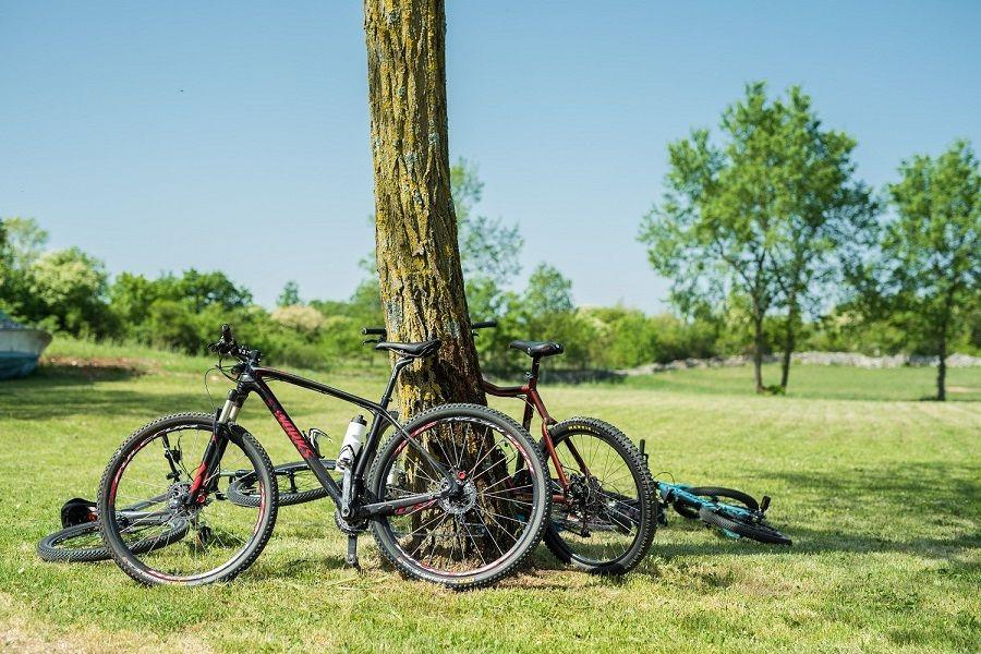 Sutra je zadnji dan za prijavu na rekreativnu bike turu Terra Albona Autunno!