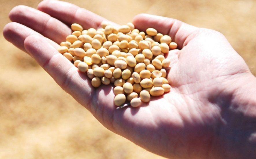 Radionica za potencijalne korisnike Potpora za ulaganja u preradu, marketing i/ili razvoj poljoprivrednih proizvoda