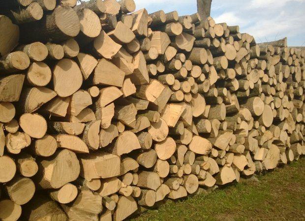Trebam ponudu za drva za ogrijev