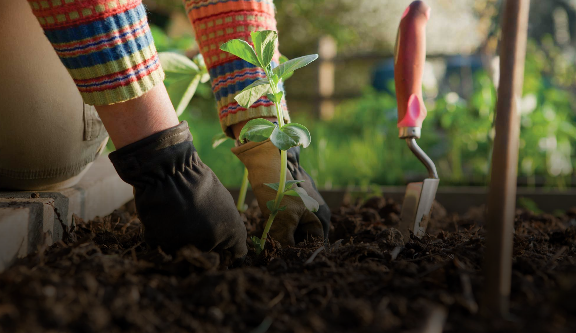 Žminj agrarija - poljoprivredni alati