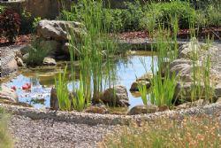 Jezera za plivanje, ribnjaci, potoci, fontane
